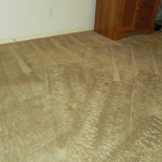 Beautiful steam cleaned carpet in El Paso home